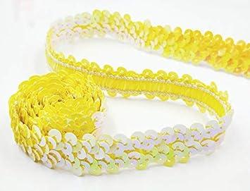 10 m Bordo di Paillettes Elastico Larghezza 20 mm Lacci Lucidi per progetti di bricolage Indumenti da Danza UVM Gold RAILONCH DIY Nastro per Paillettes