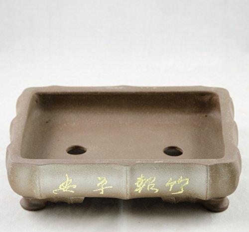 Zisha Bonsai Pot - 5