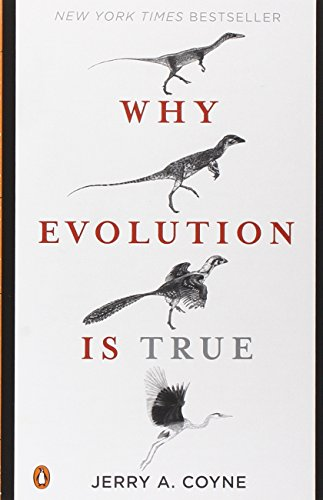 a comparison of the theory of evolution and theory of creationism Culture reveals what is human in biological evolution - the origin of the human beings, theories of evolution and biblical revelation creation and evolution it is by comparing themselves to nature around them that human beings can note their natural connection to the animal world, with which they share most of their.