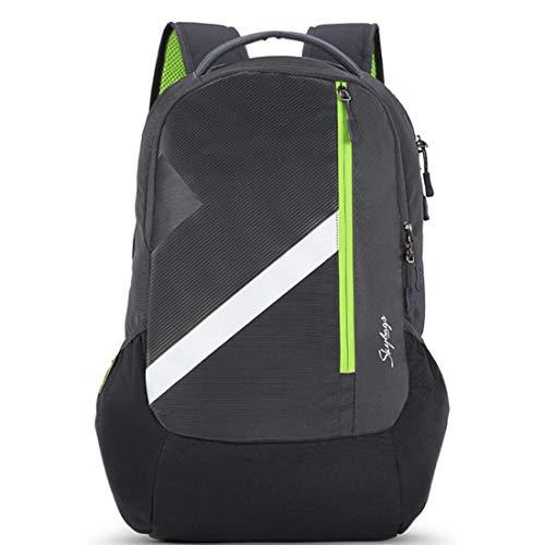 Skybags Tekie 06 30 Ltrs Grey Laptop Backpack (TEKIE 06)