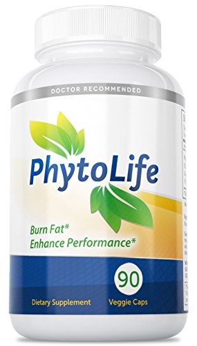 Price comparison product image PhytolifeTM Turmeric Resveratrol Polyphenol Rich Formula / Phosphatidyl Coline,  Milk Thistle,  and Green Tea Extract Guaranteed by Dr. Flam