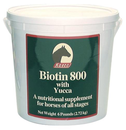 BIOTIN 800 POWDER 6LB D/S by KAECO GROUP INC
