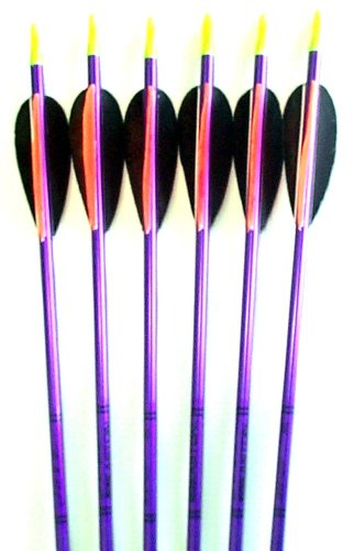 Feather Fletched Easton XX75 Jazz Aluminum Arrows 6-Pack