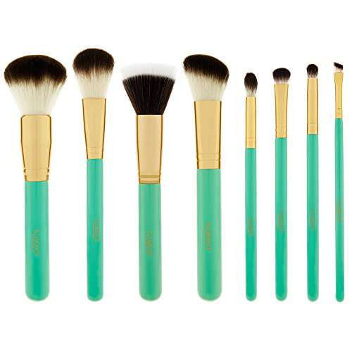 Ashley Brush (Illuminate by Ashley Tisdale 8 Piece Brush)