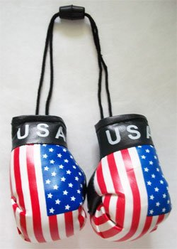 Mini Boxing Gloves - USA