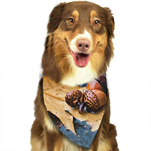 Address Verb Dog Bandana Pet Scarf Pine Cone Cute Triangle Bibs Baby Puppy Cat Kitten