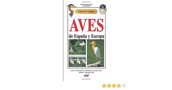 Guía de campo de aves de España y Europa: Amazon.es: Brichetti ...