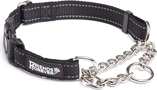 Friends Forever Martingale Collars for Dogs, Reflective No P