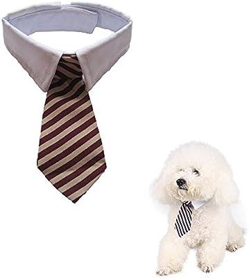 Namsan Twill algodón para perros pequeños gatos cachorro Tie ...