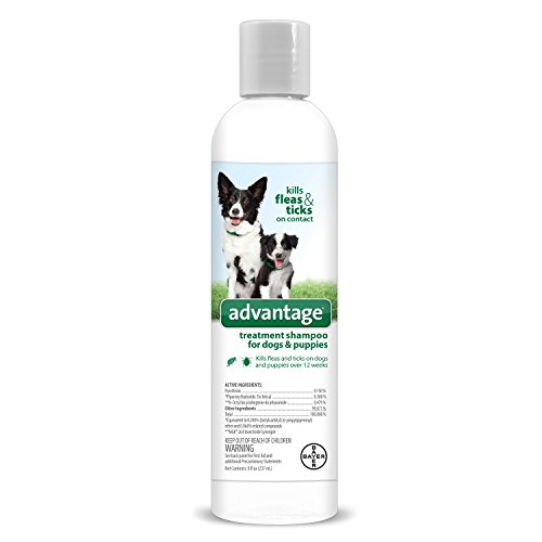 Bayer Animal Health Advantage Shampoo Flea and Tick Treatment for Dogs and Puppies 8 oz