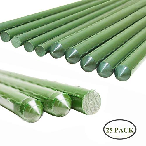 Stick Plant (YIDIE Sturdy Metal Garden Stakes 5 Ft Plastic Coated Steel Plant Sticks,Pack of 25)