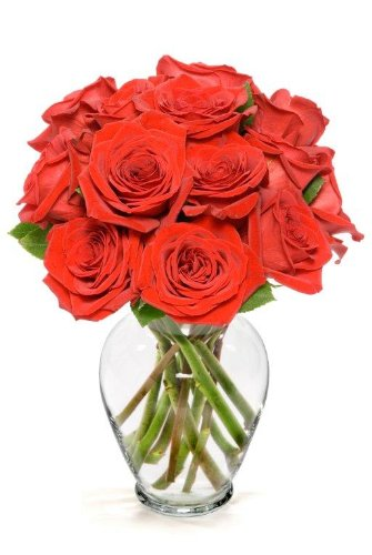 Amazoncom Benchmark Bouquets Dozen Red Roses With Vase Fresh
