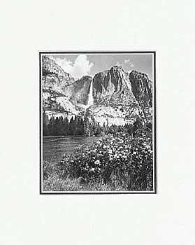 Ansel Adams - Yosemite Falls, Azaleas SM Matted