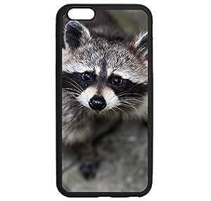 Animal Raccoon 23 phone case for iphone 6plus