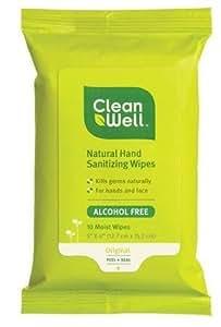 Hand Sanitizing Wipes Travel Size 10 Wipes