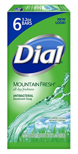 dial bar soap mountain fresh - 2