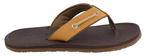 Sperry Menns, Pensacola Thong Sandal Tan
