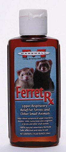 Rx Upper Respiratory Treatment - 4