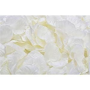 Vivianbuy 3000 PCS Ivory Artificial Silk Flower Rose Petals for Wedding Party Bridal Decoration 86