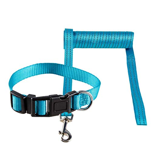 SHENGGUANFACAI Dog Leash with Collar Anti-Light Strip Retractable Dog Strap Suitable for Training Game Camping Or Backyard Blue,S