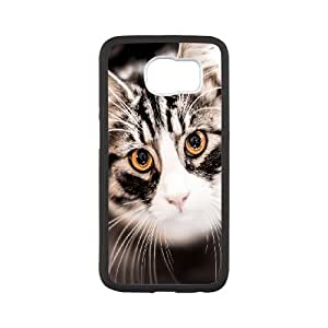 Best Phone case At MengHaiXin Store Grumpy Cat,Because Cats Pattern 13 For Samsung Galaxy S6
