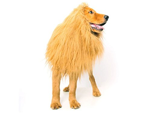 [Lion Mane Costume for Dog - Fancy Dress Wig for dogs by Supply Tiger] (Making Elf Costume)