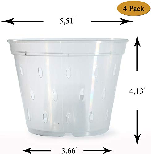 DAN Market 5.5 inch Orchid Breathable Slotted Clear Plastic Pot - 4 Pack (Orchid Supplies Pots)