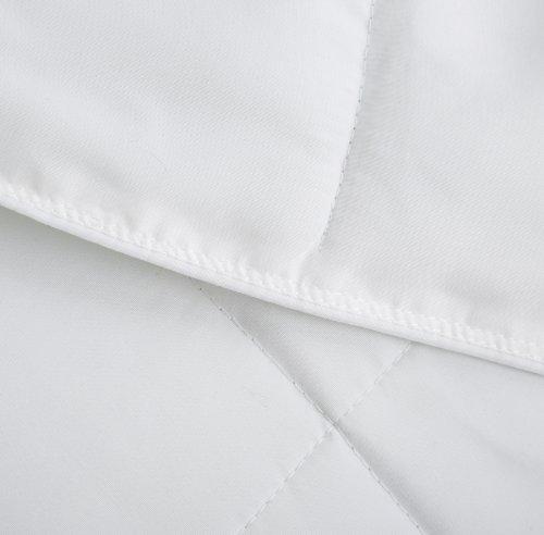 King Pinzon Hypoallergenic Down Alternative Year Round Comforter
