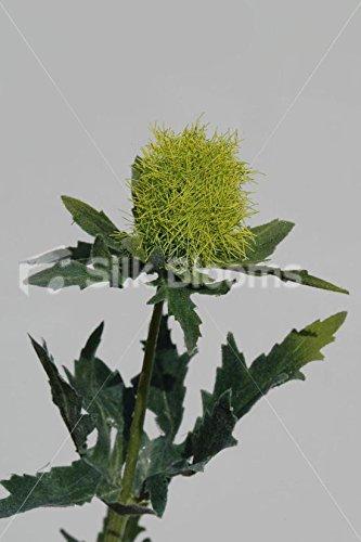 Amazon Artificial Yellow Scottish Sea Holly Thistles Yellow