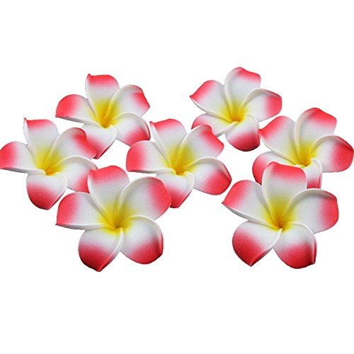 HugeStore 100 Pcs Diameter 2.4 Inch Artificial Frangipani Plumeria Hawaiian Flower Petals For Wedding Decor Decoration Red