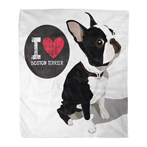 (Golee Throw Blanket Cute Closeup Portrait of The Domestic Dog Boston Terrier Breed 50x60 Inches Warm Fuzzy Soft Blanket for Bed Sofa)