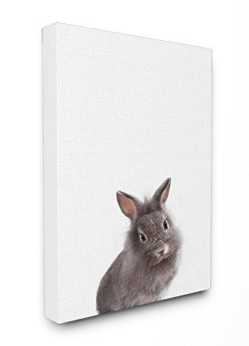 Bunny Canvas Art - Stupell Home Décor Baby Bunny Studio Photo Stretched Canvas Wall Art, 16 x 1.5 x 20, Proudly Made in USA
