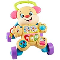 Fisher-Price Laugh and Learn Smart Stages Learn with Sis Walker, Multi Color