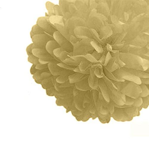 Tissue Paper Pompoms Party Craft Paper Flower ()