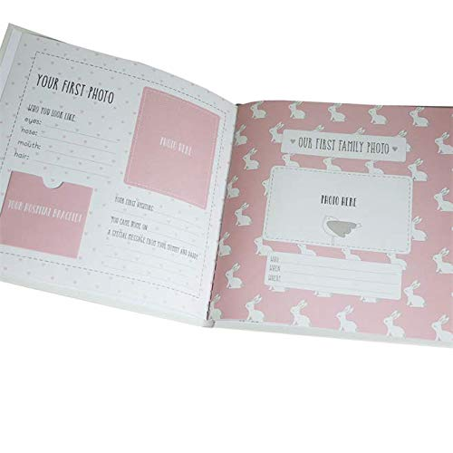 Pink Baby Girl 5338 My First Year Record Book Petit Cheri Collection Gift