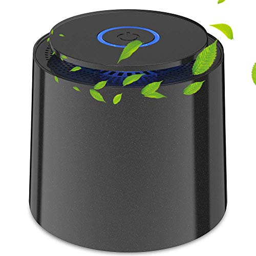 BOYON Air Purifier with H13 True HEPA Filter, Air Purifiers for Home for Allergies, Smokers, Pollen, Pet Dander and More