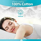 Cotton Sheets for Queen Size Bed - Egyptian Cotton