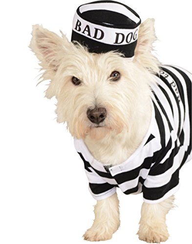 Rubie's Pet Costume, Large, -