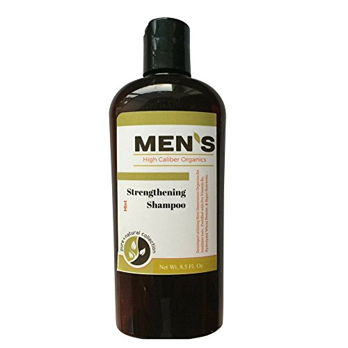 Mens Organic Shampoo - PH Balanced, Sulfate Free, Fortified with Tea Tree Oil, Hydrolyzed Wheat Protein, Pro-Vitamin B5, Vitamin E - Mint 8.5 oz