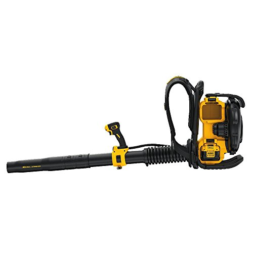 Buy rated backpack blower