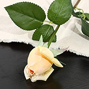 10pcs 11pcs/Lot Rose Artificial Flowers Real Touch Rose Flowers for New Year Home Wedding Decoration Party Birthday Gift,C Champange 3,11pcs 106