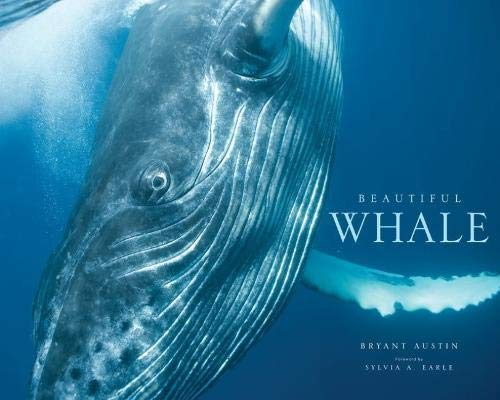 Photographer and conservationist Bryant Austin's breathtaking photographic project Beautiful Whale is the first of its kind: It chronicles his fearless attempts to reach out to whales as fellow sentient beings. Featuring Austin's intimate images--som...