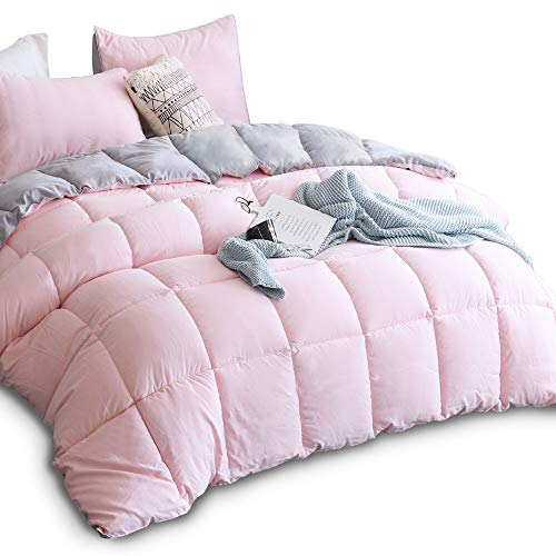 (KASENTEX All All Season Down Down Alternative Quilted Comforter Set with Sham(s) - Reversible Ultra Soft Duvet Insert Hypoallergenic Machine Washable, Twin, Pink Potpourri/Quartz Silver)
