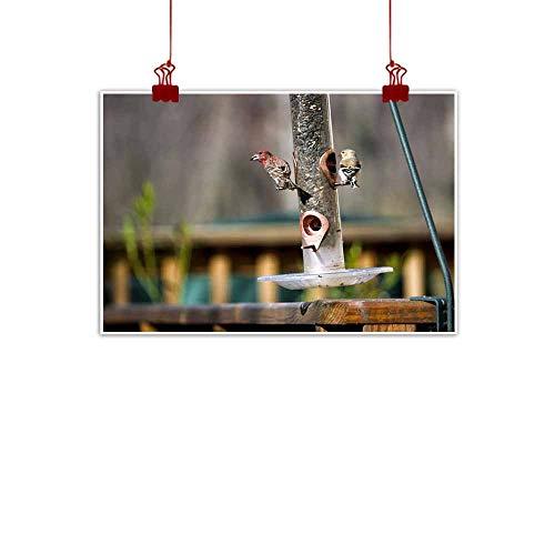 Dragonfly Tube Bird Feeder - duommhome Light Luxury American Oil Painting Bird Feeder Canvas Wall Art 28