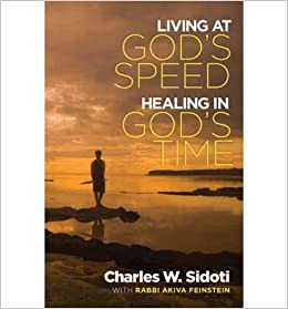 Living at God's Speed: Healing in God's Time (Paperback) - Common