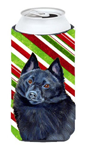 Schipperke Candy Cane Holiday Christmas  Tall Boy Beverage Insulator Beverage Insulator Hugger - Candy Cane Huggers