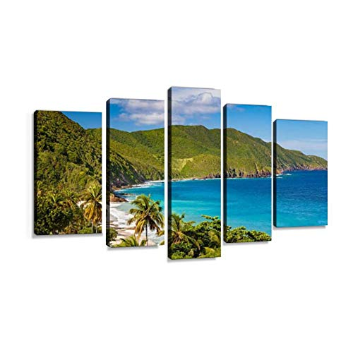 Panoramic View of Carambola Beach, St Croix, US Virgin Islands 5 Pcs Premium Canvas Art Wall Hanging Paintings Modern Abstract Decoration Artworks Gift Unique Designed with Wooden Frame (Living In St Croix Us Virgin Islands)