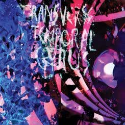 Transverse Temporal Gyrus RSD Exclusive LP by Animal Collective
