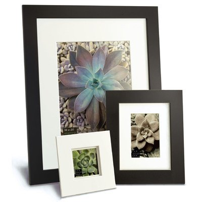 """Metro Picture Frame Color: Black, Size: 11"""" x 11"""" Frame/8"""" x 8"""" Mat"""