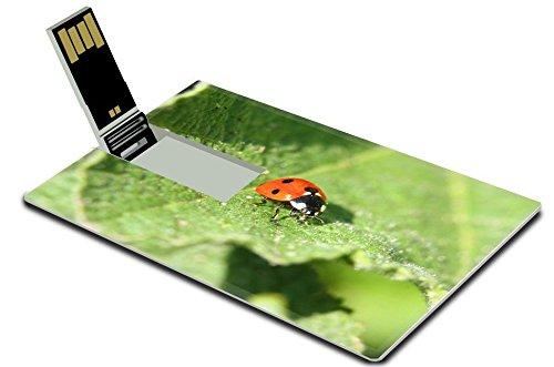 256GB Cartoon ladybug USB Flash Drive - 3
